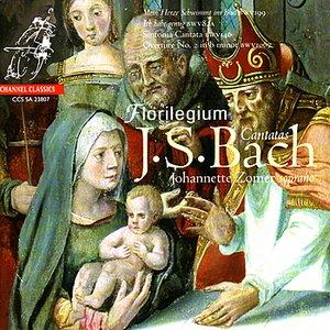 """Image for 'Cantata, BWV 199 - """"Mein Herze Schwimmit in Blut"""": VIII. Wie freudig ist mein Merz - """"Aria""""'"""