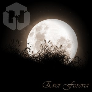 Image for 'Ever Forever'