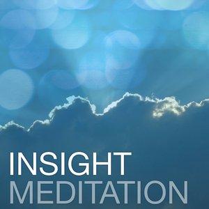 Image pour 'Insight - A Theta Meditation'