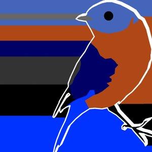 Image pour 'Bluebird Handwriting'