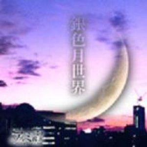 Bild für '銀色月世界'