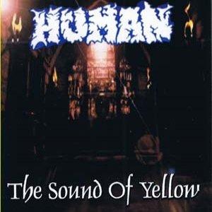 Immagine per 'The Sound Of Yellow'