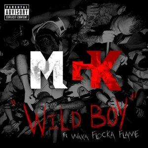 Image for 'Wild Boy'