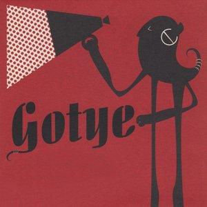 Image for 'Gotye'