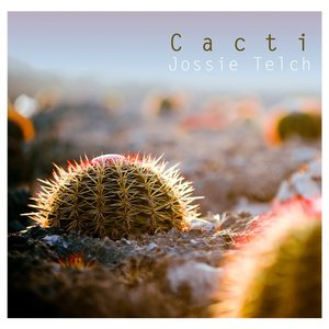 Image for 'Cacti'
