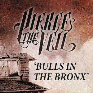 Image for 'Bulls in the Bronx'