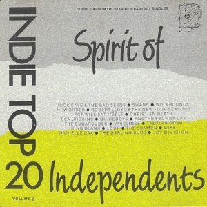 Image pour 'Indie Top 20, Volume V'