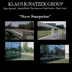 Image for 'New Surprise'