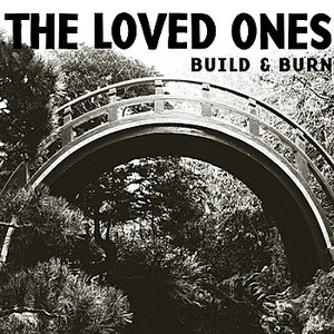 Image for 'Build & Burn'