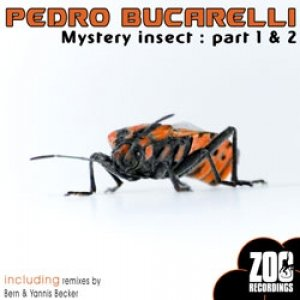 Image for 'Mystery Insect Part 1 (Bern remix)'