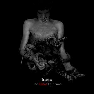 Image for 'The Silent Epidemic'