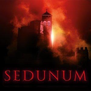 Image for 'SEDUNUM'