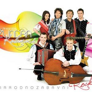Image for 'Ansambel Zlindra & Kalamari'