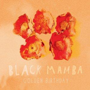 Image for 'Golden Birthday'