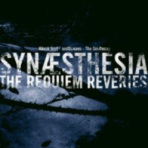 Image pour 'Synaesthesia - The Requiem Reveries'