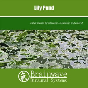 Image for 'Lily Pond'