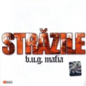 Image for 'Strazile'