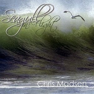 Image for 'Seagull In Flight'
