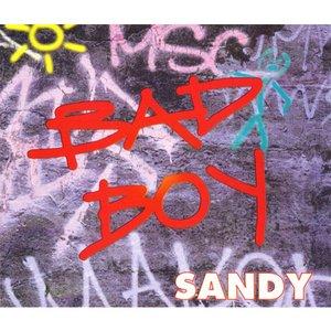 Image for 'Bad boy'