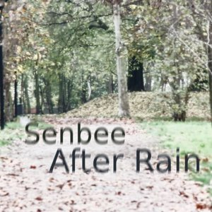 Image for 'After Rain'
