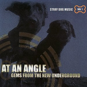 Image for 'At An Angle: Gems From the New Underground Volume 1'