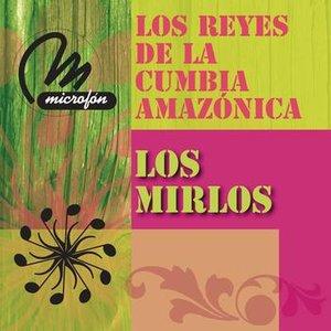 Immagine per 'Los Reyes De La Cumbia Amazonica'