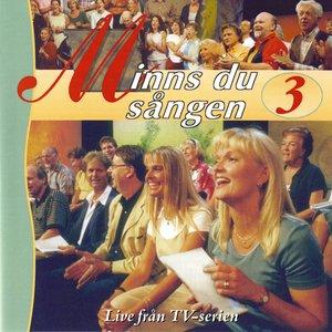 Image for 'Minns du sangen, Vol. 3'