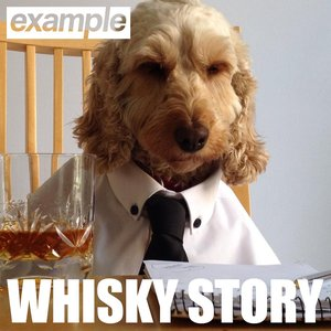 Image pour 'Whisky Story'
