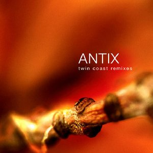 Image for 'Twin Coast Remixes'