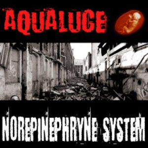 Image for 'Norepinephrine System'