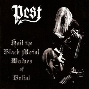 Immagine per 'Hail the Black Metal Wolves of Belial'