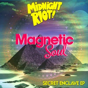 Immagine per 'Magnetic Soul'