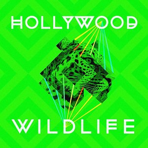 Image for 'Hollywood Wildlife'