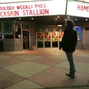Imagen de 'Buckskin Stallion'