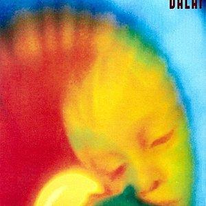 Image for 'Dalai'