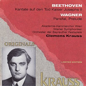 Image pour 'Clemens Krauss Conducts Beethoven & Wagner'