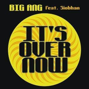 Image for 'It's Over Now'