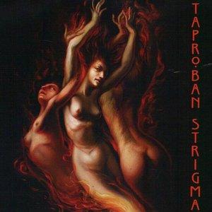 Image for 'Strigma'