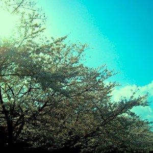 Imagen de 'April - EP'