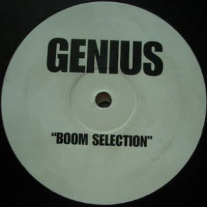Image for 'Boom Selection'