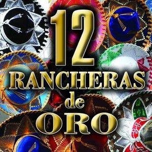 Image for 'Rancheras de Oro 1'