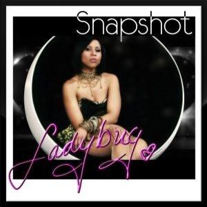 Image pour 'Snapshot'