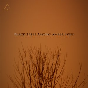 Immagine per 'Black Trees Among Amber Skies'