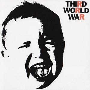 Bild för 'Third World War'
