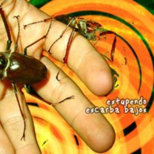 Image for 'Escarba bajos'
