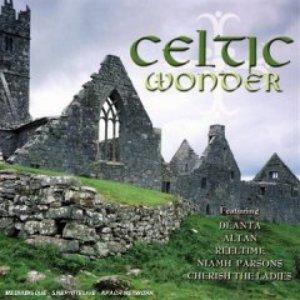 Image for 'An Páistín Fionn'