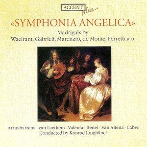 Image for 'Vocal Music - Waelrant, H. / Verdonck, C. / Marenzio, L. / Monte, P. / Macque, G. / Conversi, G. / Gastoldi, G.G. / Ferretti, G. (Madrigals)'