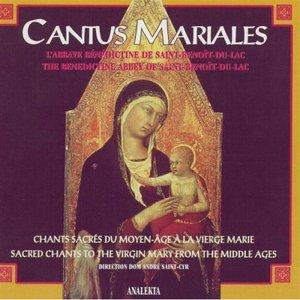 Bild für 'Sancta Maria'