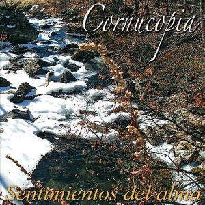 Image for 'Sentimientos del alma'