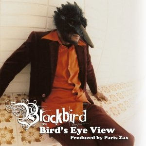 Image for 'Bird's Eye View'
